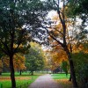 Luitpoldpark - Paseo