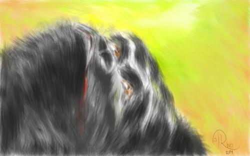 Dibujo - La caída del último señor de la selva