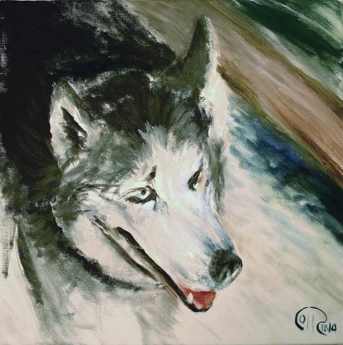 Óleo - Perro lobo