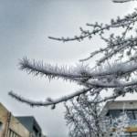 München - Espinas de hielo