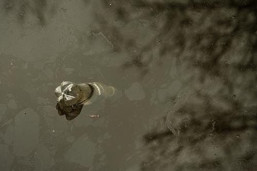 Amsterdam - Agua de los canales
